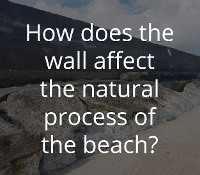 How does the wall affect the natural process of the beach?
