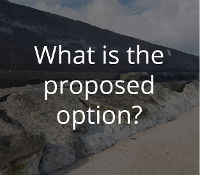 What is the proposed option?